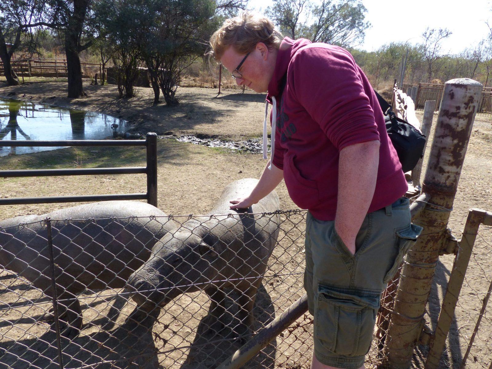 Sedrick en Marmite het dwergnijlpaard - Kwispeltherapie