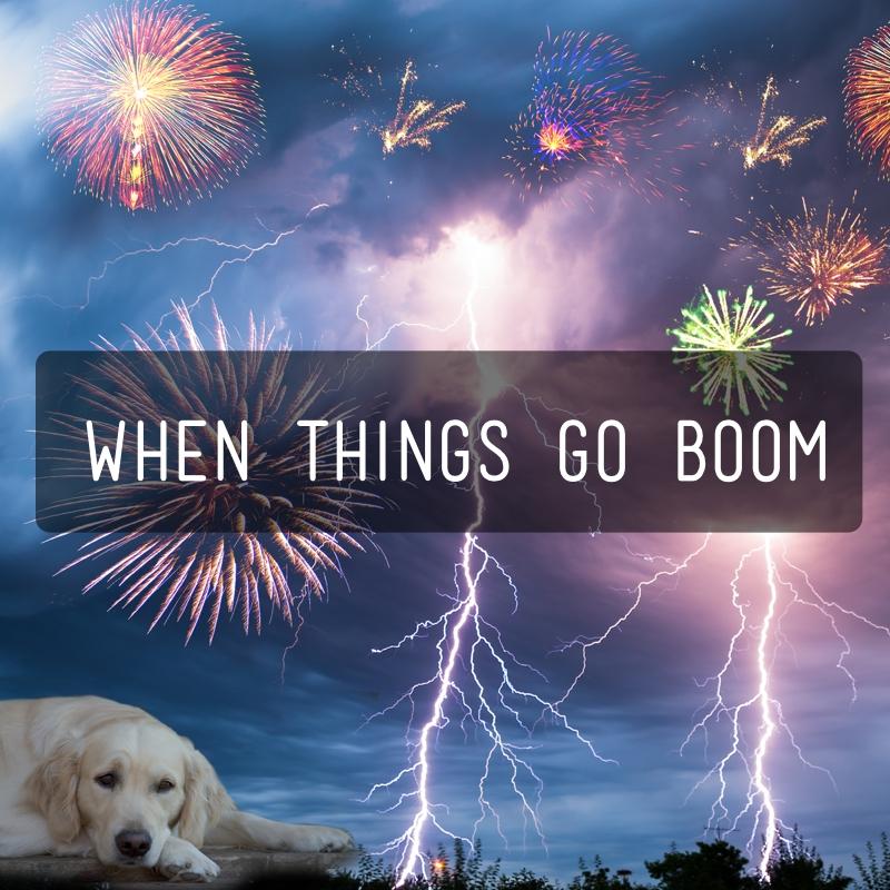 When things go boom-bundel - Kwispeltherapie