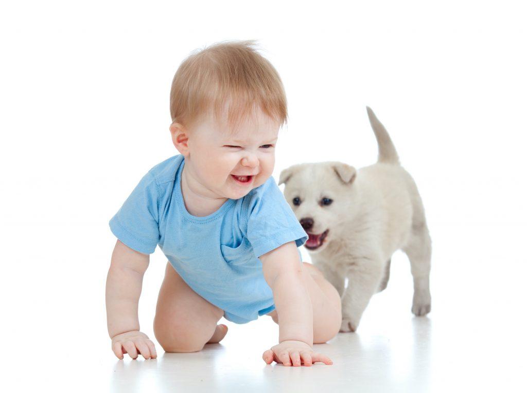 Hond eet ontlasting baby - Kwispeltherapie