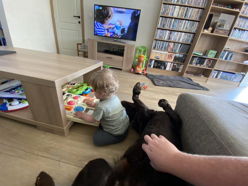 kind-hond relatie eindresultaat 8 gouden regels